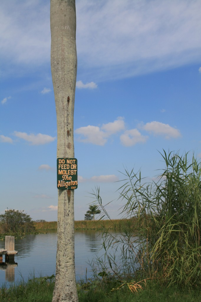 Do not Feed or Molest the Alligators