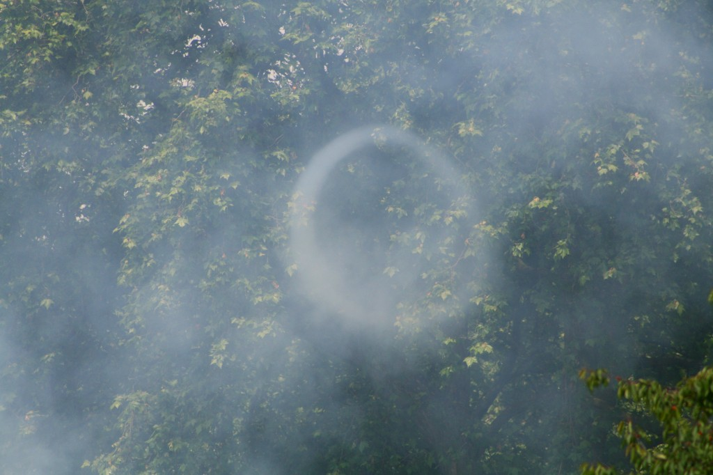 coronation-day-smoke-ring