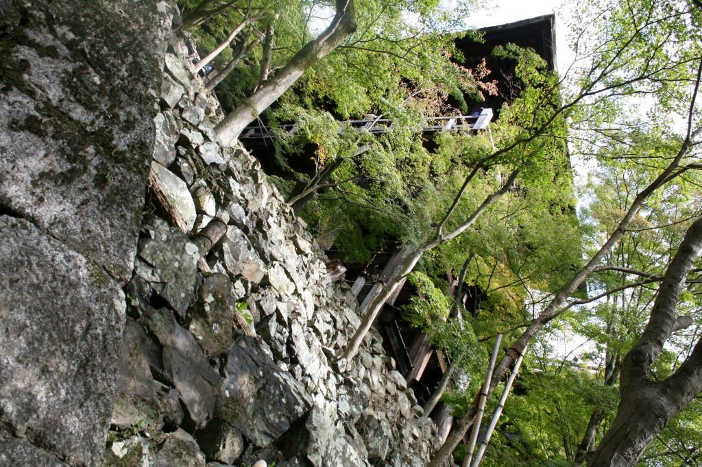 kiyomizu-dera-temple-forest