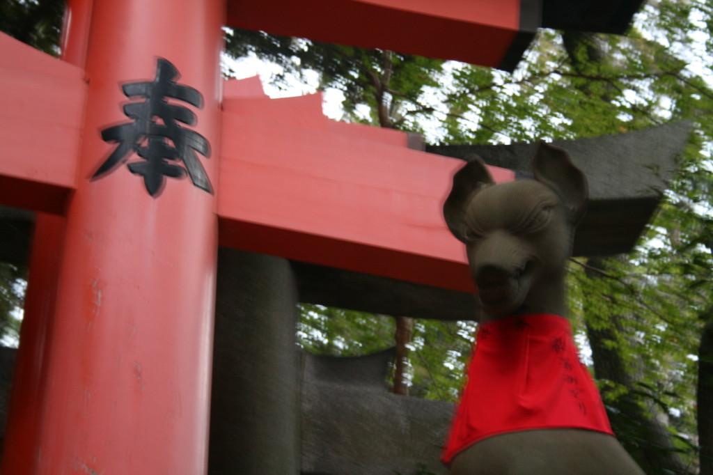 fushimi-inari-blurred