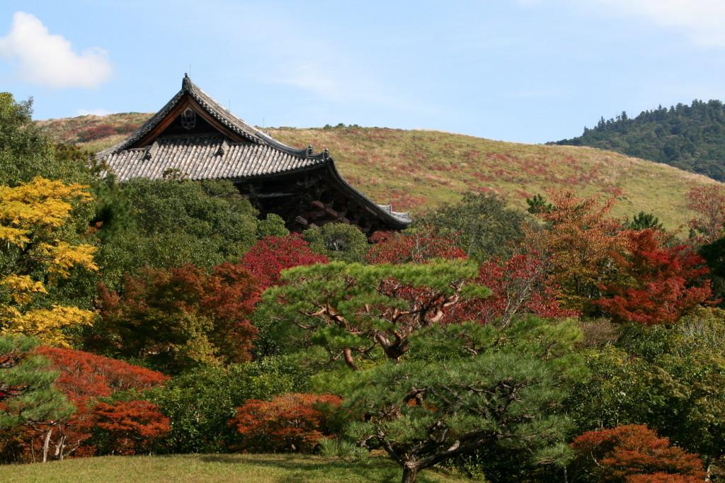 isuien-garden-todai-ji-gate